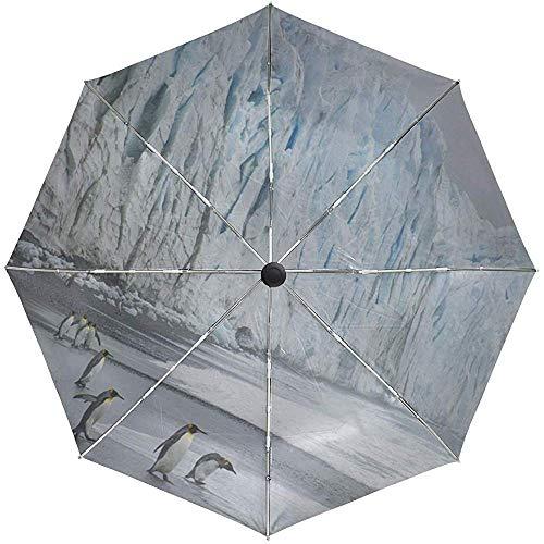 Automatischer Regenschirm Royal Penguins Coast Ocean Ice Travel Praktisch Winddicht Wasserdicht Faltbar Auto Open Close