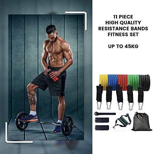 Flinq 11-Teiliges Widerstandsbänder Set | Quality Resistance Bands | Fitnessbänder Set mit 5 Wiederstands Bänder max 45 kg incl. Griffe, Türanker, Fußschlaufen, Tragetasch