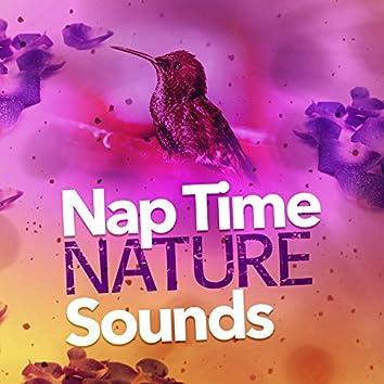 Nap Time Nature Sounds