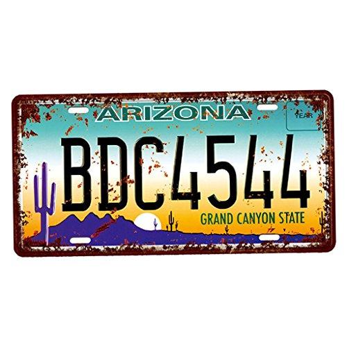 Baoblaze USA Kennzeichen Metall Blechschilder Schild Plakette für Cafe Bar Tür - Arizona
