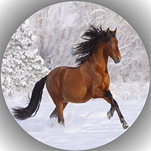 Fondant Tortenaufleger Tortenbild Geburtstag Pferde AMA26