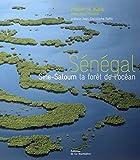 Sénégal: Sine-Saloum la forêt de l'océan
