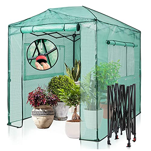 EAGLE PEAK 8'x6' Fast Easy Setup Pop Up Garden Greenhouse, Instant Walk-in Indoor & Outdoor Garden Green House Canopy, Front and Rear Roll-Up Zipper Entry Doors and 2 Large Roll-Up Side Windows