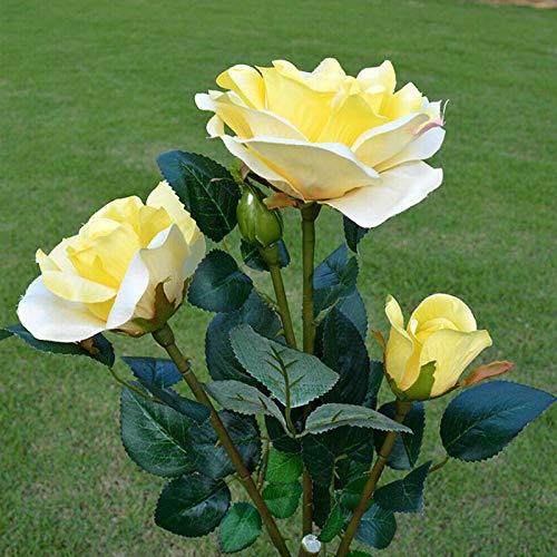 ONEVER Solar Solar Gartenleuchten, Ip65 Wasserdicht 3 Köpfe Led Rose Lichter Garten Patio Yard Weihnachten Dekorative Landschaft Led Rose Lichter 1 Pack