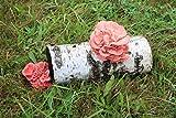 Bio Rosenseitling Substrat Pilzbrut - Pilze selber züchten - Substratbrut