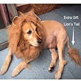 NACOCO Dog Wig Lion Mane Hair Hat with Ear and Tail Funny Halloween Dog Costume for Large Dogs Golden Retriever