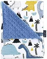 "NS Brook Minky Baby Blankets 28"" x 40"" Design Soft Swaddle Blanket for Newborns Nursery Stroller Receiving Toddlers for Boy or Girl Crib Bedding - Royal Blue"