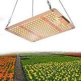1000W LED Grow Lampe, 2x2ft wasserdichtes sonnenähnliches Vollspektrum Pflanzenlampe LED,Pflanenlicht für Hydroponic, Indoor Seeding Veg Flower, Grow Tent und Greenhouse Led Pflanzenlampe
