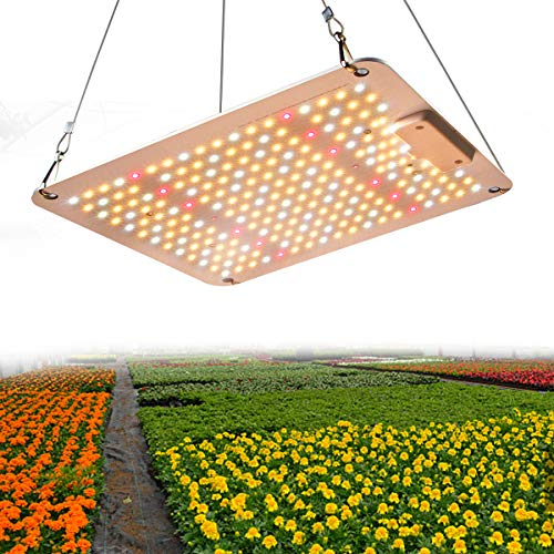 Lámpara LED de cultivo de 1000 W, 2 x 2 m, impermeable, espectro completo para plantas, para hidropónico, para interior de plantas vegetales, plantas de cultivo y Greenhouse