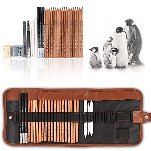 29 Pieces Professional Sketching & Drawing Art Tool Kit With Graphite Pencils, Charcoal Pencils, Paper Erasable Pen, Craft Knife-Lightwish (without Sketchbook, with Canvas Rolling Pouch)