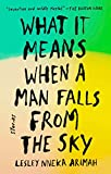 What It Means When a Man Falls from the Sky: Stories (English Edition)