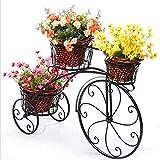 Soporte de plantas de triciclo, carro de maceta al aire libre y interior soporte vintage bicicleta decorativa de la planta de metal y soporte de la maceta del soporte de la planta de la maceta Gran re