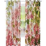 Cortinas para ventanas con diseño de flores de buganvilla en soleado verano flores vista al parque natural, 52 x 95 cm con ojales para tratamiento de ventanas, color rosa pálido, verde oliva