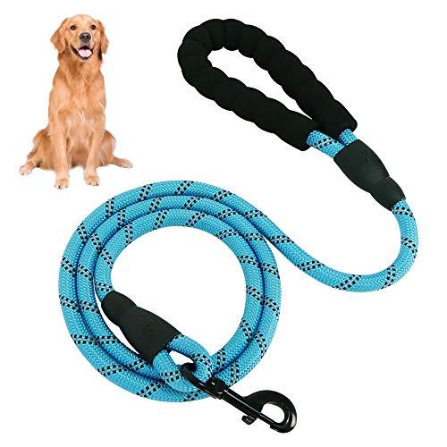 Eastlion Hundeleine Starke 5 FT mit Bequemen Gepolsterten Griff und Reflektierend,Trainingsleine Nylon Sicherheit Nachts für Kleine,Mittlere und Große Hunde(Blau,1.5m)