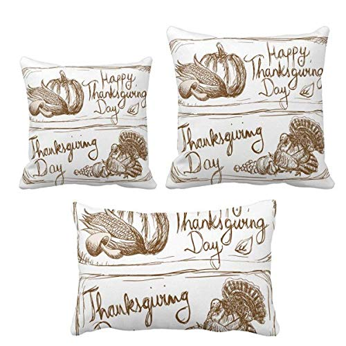 DIYthinker - Juego de fundas de cojín para decoración de sofá o sofá, diseño de día de Acción de Gracias, color gris