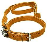 VRCT 1.25 Inch Designed Dog Collar Belt, 1.5M-2M LENGTHY Dog Dog Collar