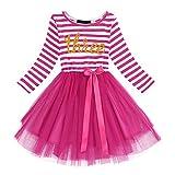Baby Girls Shinny Stripe Long Sleeve Printed Princess Casual Birthday Tutu Tulle Dress Hot Pink (3 Years)