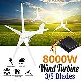 TQ 8000W Wind Turbines Generator, 12V/24V 3/5 Blades Horizontal Wind Generator with...