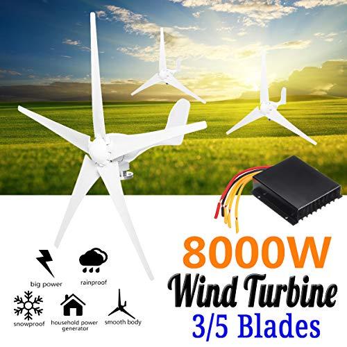 TQ 8000W Wind Turbines Generator, 12V/24V 3/5 Blades Horizontal Wind Generator with Controller Windmill Energy Turbines Charge,24v,5 Blades