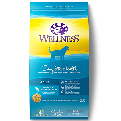 Wellness Complete Health Natural Dry Dog Food, Whitefish & Sweet...