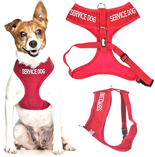 SERVICE DOG (Do Not Disturb/Dog Is Working) Red Color Coded Non-Pull Front and Back D Ring Padded and Waterproof Vest Dog Harness PREVENTS Accidents By Warning Others Of Your Dog In Advance (S)