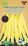 Germisem Biologico Merveille de Venise Semi di Fagiolo Rampicante 80 g
