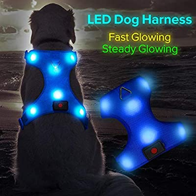 Higo LED Dog Harness, USB Rechargeable Soft Mesh Harness No Pull Lighted Safety Collar, Increased Visibility&Safety for Small Medium Large Dog