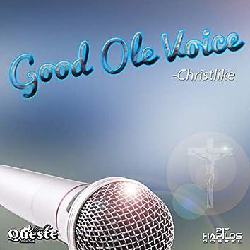 Good Ole Voice - Single