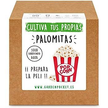 Garden Pocket - Kit Cultivo TRÉBOL DE Cuatro Hojas: Amazon.es: Jardín