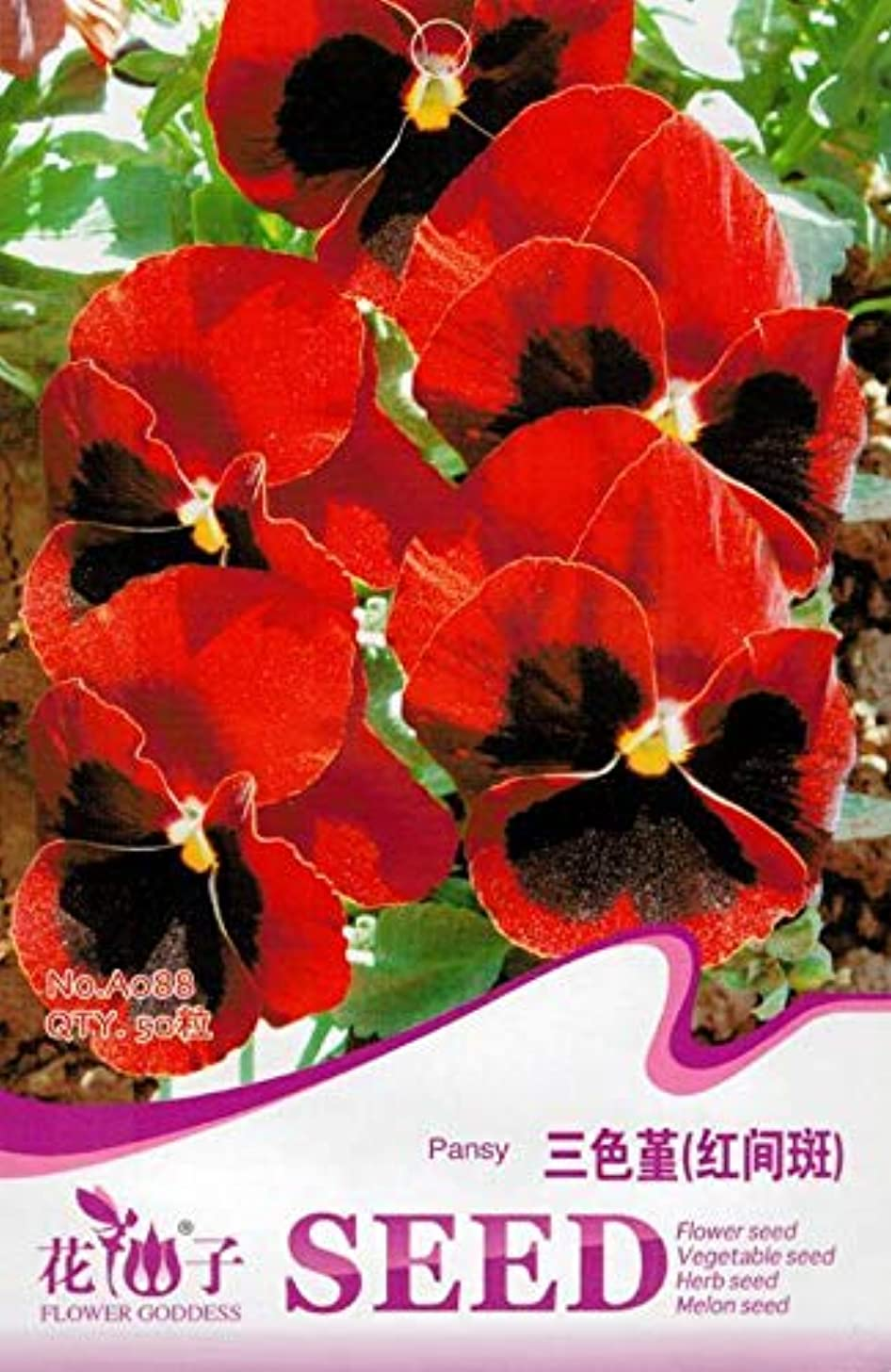Portal Cool Original Packa50 Red Pansy Seeds Viola Tricolor Herb Trinity Garden Flowers A088