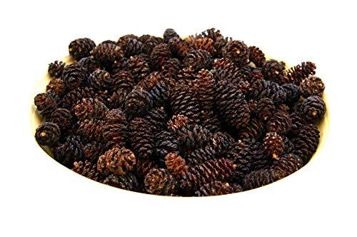 El Natural - Produkte aus der Natur 500 Stück - Erlenzapfen Alnus glutinosa Schwarzerle Aquarium Black Alder Cones Krebse