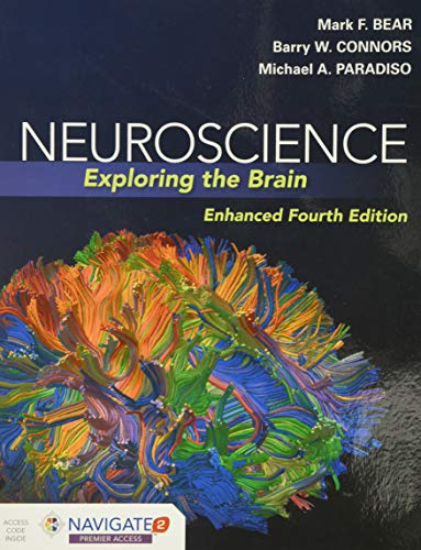 Compare Textbook Prices for Neuroscience: Exploring the Brain, Enhanced Edition: Exploring the Brain, Enhanced Edition 4 Edition ISBN 9781284211283 by Bear, Mark,Connors, Barry,Paradiso, Michael A.