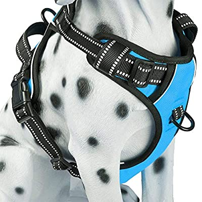 PoyPet No Pull Dog Harness, Reflective Vest Harness with Front & Back 2 Leash Attachments and Easy Control Handle for Small Medium Large Dog (Blue, Medium)