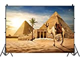Leowefowa Camel Near Entrance to Pyramid of Cheops Backdrop 9x6ft Dusk Sunset Desert Giza Pyramids Photography Background Historical Cultural Relics Ancient Civilization Children Adult Travel Shoot
