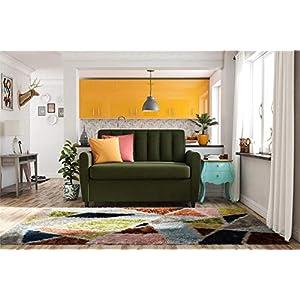51l7 uUZosL. SS300  - Novogratz Brittany Sofa Futon - Premium Upholstery and Wooden Legs - Persimmon Orange