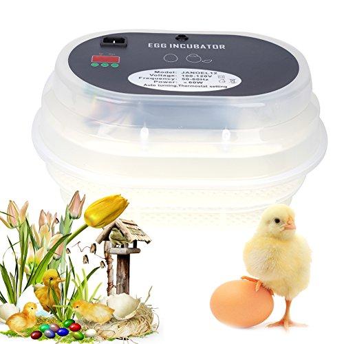 incubateur Huevo, incubateur de Huevo automático Digital Control de la Temperatura y la Humedad 9–12Huevos Incubation de Aves (Eclosion para Couver Huevo de Pato Pollo Aves codorniz incubadora