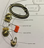 TAOT Wiring Kit for Precision Bass P-Bass - Orange Drop Cap