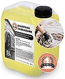 Shampoing Voiture Efficace Sans Trace et Haute Brillance Economique et Concentré - Lavage haute pression ou Mains 5 L