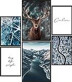 Papierschmiede® Premium Poster Set Eiszeit | 6 Bilder als