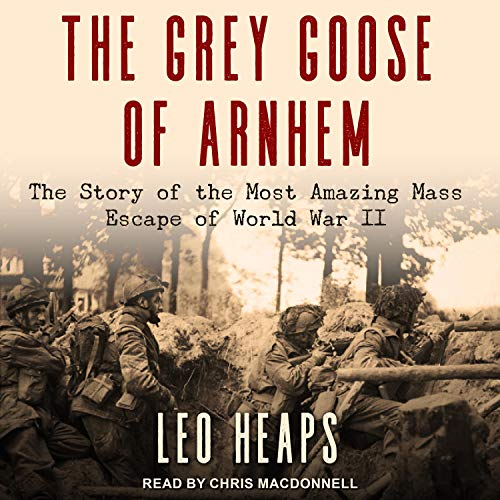 The Grey Goose of Arnhem cover art