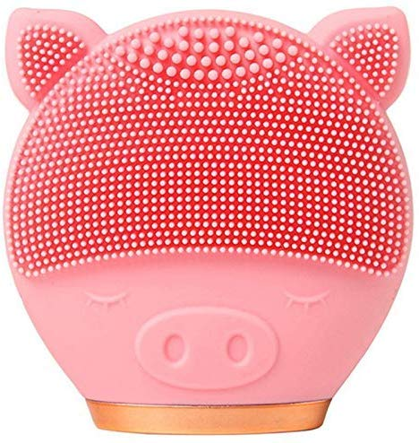 Li Long every day Silicone Facial Cleansing Brush, Waterproof Rechargeable Face Brush for All Skin Types Daily Cleansing Exfoliation and Massage