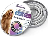 Dog Flea and Tick Collar Enhanced with Natural Essential Oils, 8 Month Flea and Tick Treatment and Prevention for Dogs, One Size Fits All, Adjustable & Waterproof