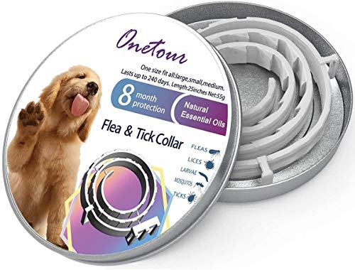 Best Dog Flea And Tick Preventions