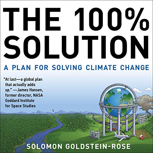 The 100% Solution  By  cover art
