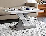Viosimc Cliff Mesa de Centro Moderna, Color Blanca - Gris, Mesa de Café con Estante de Almacenamiento, para Salón Mesa Baja Salon, Fácil de Montar