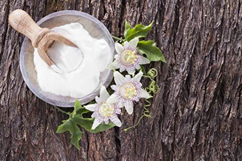 Leggera Organic Natural Conditioner