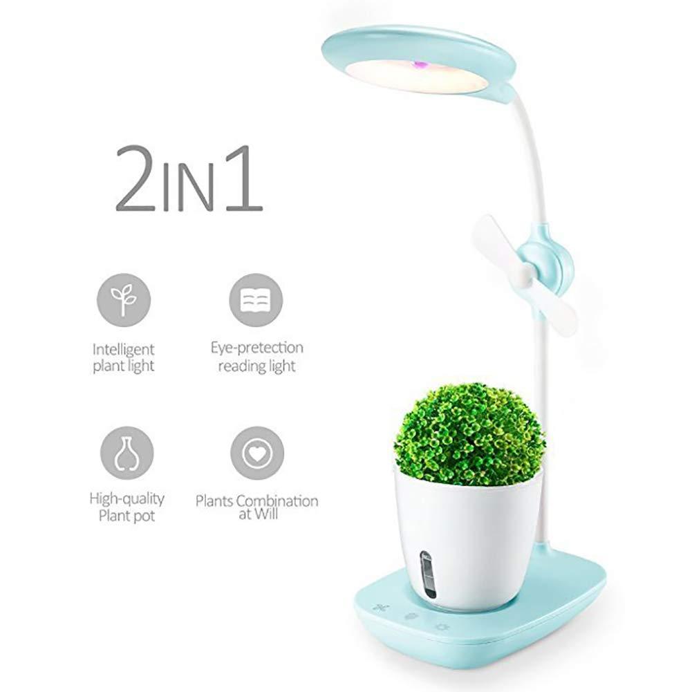 Sistema de plántulas de jardín interior inteligente,cultivo hidropónico,hasta 12 plantas en 25-40 días, sistema automático de iluminación e irrigación LED,tanque de agua,Grow It Smart Iluminación: Amazon.es: Deportes y aire libre