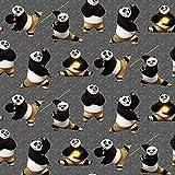 French Terry, Sweatshirtstoff mit Tukan Kung Fu Panda -