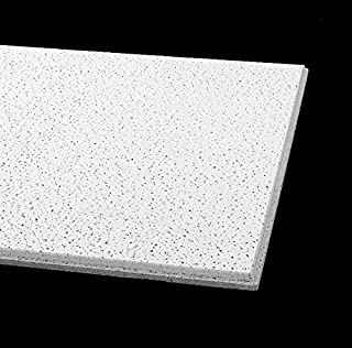 Acoustical Ceiling Tile 48