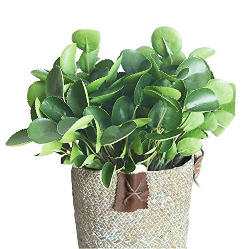 JD ARTIFICIAL PLANTS Juego de 6 ramas artificiales de 38 cm para decoración del hogar, oficina, restaurante, boda, jardín, tienda, ventana, 6 unidades